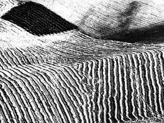 Mario Giacomelli (1925 - 2000) - Paesaggi, 1953/63