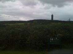 Under the shadow of Scrabo tower Golf Course Reviews, Under The Shadow, Golf Courses, Tower, Mountains, Nature, Travel, Voyage, Lathe