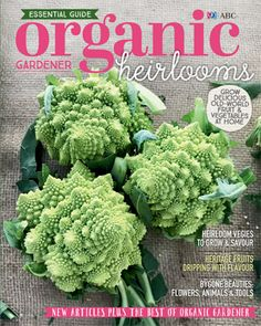 ABC Organic Gardener's Essential Guide: Heirlooms celebrates the incredible bounty of old-world fruit and vegies. From 900-year-old 'Purple Dragon' carrots, to apples and oranges that arrived with the First Fleet, we show you just how easy it is to grow your own, and recommend the best cultivars for your patch. Plus, we share the delights of bygone beauties: old-fashioned flowers, rare chooks and pigs, and hand-forged tools. First Fleet, Grow Your Own, Flower Fashion, Pigs, Old World, Organic Gardening, Apples, Carrots, Dragon