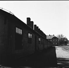 Auschwitz I    Kodak Tri-X 400