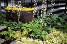 Saltwater-tolerant garden | Gardenista