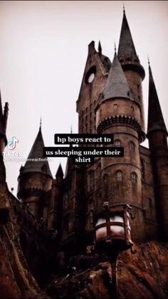 Harry Potter Preferences, Harry Potter Imagines, Harry Potter Stories, Harry Potter Magic, Harry Potter Cake, Harry Potter Room, Harry Potter Aesthetic, Harry Potter Quotes, Harry Potter Fan Art