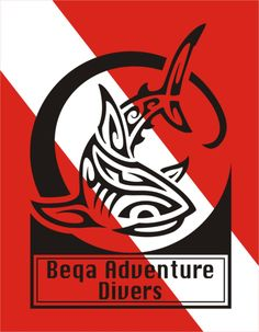 The Fiji Shark Dive - Beqa Adventure Divers - Helpful and friendly staff. Must do this again!!!