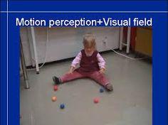 visual perception test에 대한 이미지 검색결과
