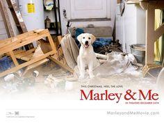 Marley & Me ♥