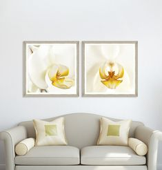 Tablou Framed Art Orchid Bloom I Framed Art, Orchids, Gallery Wall, Bloom, Coffee, Abstract, Interior, Modern, Table