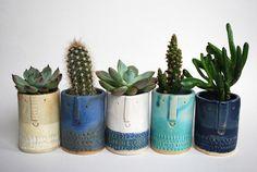 Céramique Atelier Stella London Succulent Pots, Cacti And Succulents, Planting Succulents, Potted Plants, Indoor Plants, Planting Flowers, Planter Pots, Cactus Plants, Face Planters