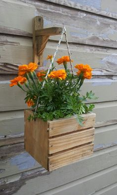 Single Planter Easley Mounts On A Fence Post Or Wooden Can Also Be Mounted Garage Wall Any Flat Surface Including Tree Trunk