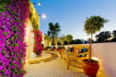 Muros verdes e jardins verticais. #muroverde #jardimvertical #paisagismo #greenwall #verticalgarden #encantadahome