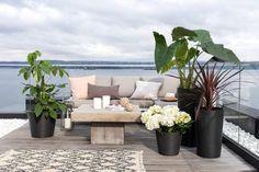 Slik planter du i krukkene Outdoor Sofa, Outdoor Furniture, Outdoor Decor, Sectional Sofa, Planting, Home Decor, Patio, Modular Couch, Plants