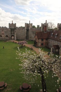 Framlingham Castle, Suffolk, England. Spent many hours there having picnics and watching Larry throw his boom-a-rang.