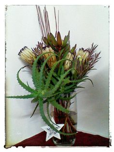 Rustic flower arrangement using Protea and Aloe.