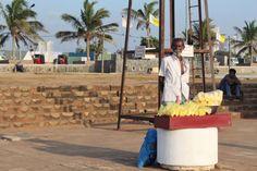 """Vendedor de Frutas Galle Face Green. Conoce más en nuestro #artículo: """"Una Tarde Local en Colombo: Galle Face Green"""". #SriLanka #Colombo #Blog #TravelBlog #BlogDeViajes #SLinMyEyes"""