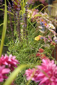 blumenk sten romantisch gestalten balkonpflanzen balkon pflanzen bepflanzung und pflanzen. Black Bedroom Furniture Sets. Home Design Ideas
