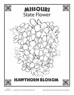 Mo state symbols coloring pages