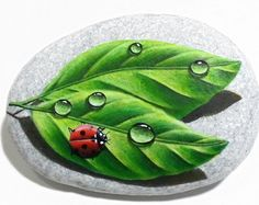 Reserved for Shane. Bee And Water Drop On A Leaf by RockArtAttack