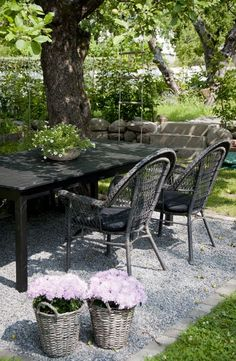 Casual Black Table and Chairs Under a Tree
