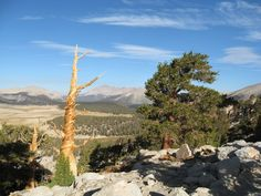 PCT Section Hike: Kennedy Meadows to Onion Valley - BackcountryForum.com