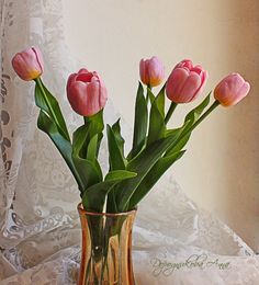 Modeling. Tulips from polymer clay. Master Class. Discussion on LiveInternet - Russian Service Online Diaries