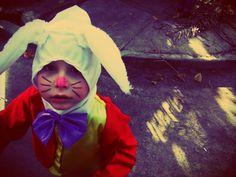 the rabbit from wonderland