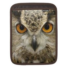 >>>Are you looking for          Horned Owl Eyes iPad Sleeve           Horned Owl Eyes iPad Sleeve you will get best price offer lowest prices or diccount couponeThis Deals          Horned Owl Eyes iPad Sleeve today easy to Shops & Purchase Online - transferred directly secure and trusted ch...Cleck Hot Deals >>> http://www.zazzle.com/horned_owl_eyes_ipad_sleeve-205498723066008999?rf=238627982471231924&zbar=1&tc=terrest