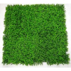 Deluxe Buxus Artificial Outdoor Panel ($88) ❤ liked on Polyvore featuring home, outdoors, outdoor decor, outdoor wall decor, faux panels, patio wall decor, outdoor garden wall decor and outside garden decor