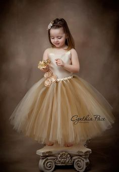 Flower Girl Tutu Dress Floor Length Sewn Tutu Dress Champagne Beige Gold with Satin Corset and Satin Flower Hair Clip CUSTOMIZABLE