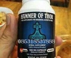Obat Kuat Hammer of Thor- Thor Hammer- jual obat kuat- hammer of thor tangerang-obat kuat tangerang- thor hammer tangerang-jual hammer of tor di tangerang, obat hammer merupakan salah satu produk obat kuat sex tahan lama terbaik di dunia untuk membantu para pria yang memiliki permasalahan dalam hal kehidupan hubungan seksual. hammer of Thor PRODUK №1 UNTUK DISFUNGSI EREKSI ini 100% berbahan alami sehingga menjadikan produk ini mendapat sertifikat resmi produk obat kuat terbaik yang sangat…