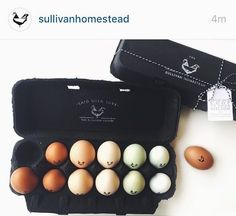 Egg Logo - Homestead Logo by Substation Paperie
