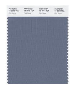 PANTONE SMART 18-3916X Color Swatch Card, Flint Stone Pantone
