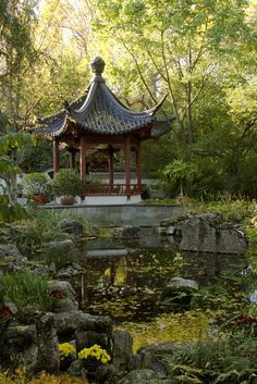 Autumn sunrise in the Chinese Garden - Missouri Botanical Garden, St. Louis MO
