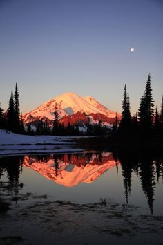 The sunrise alpenglow on an Autumn morning, with Mt Rainier's reflection in Tipsoo Lake. Glowing Reflection by David Bertch
