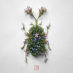 For a new series titled Natura Insects, Montreal-based creative Raku Inoue arranged a variety of leaves and blooms to create the delicate components of stag beetles, butterflies, and other insects. While the same results could be easily produced using digital or collage techniques, Inoue pushed the
