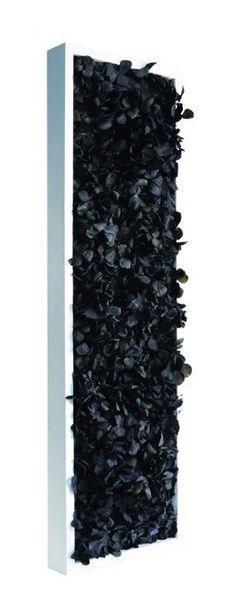 tableau slim flower Noir 60x18cm - 202-202-026 - Jardin piscine