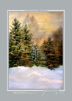 Evening Snow Winter Landscape Christmas Cards
