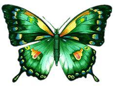 Tubes papillons                                                                                                                                                      Plus