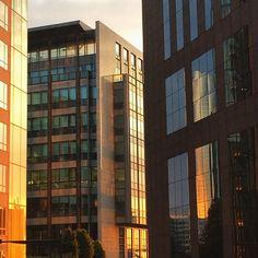 #ladéfense #reflets #architecture #coucherdesoleil #sunset #sun #paris #urban #reflections #lights #buildings #bigcitylife #parisian #france