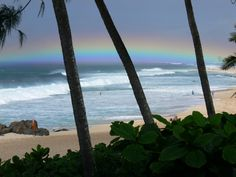 Santa's by the Sea - North Shore Oahu....my favorite spot on earth!
