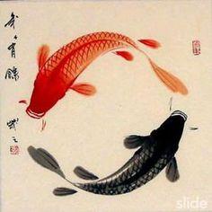 yin yang fish symbol