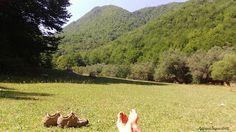 Relax al parco nazionale d'Abruzzo