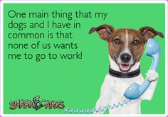 One main thing that my dogs and I have in common is that none of us wants me to go to work! | Snarkecards