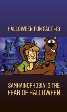 Halloween Halloween Fun Facts, Halloween Quotes, Halloween Treats, Halloween House, Halloween Night, Black Cat Adoption, Celtic Festival, A Child Is Born, William Shatner