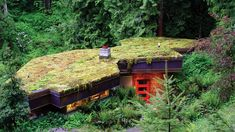 On the roof | On a driveway, atop a doghouse, up a wall—here's how to garden in small and unusual spaces