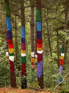 Painted forest by Ibarrola, in Oma Valley, Biscaye.  Looks like I need to plan another trip to the Basque Country...