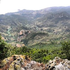 Macchia Mediterranea del #MonteArgentario - Provincia di Grosseto - Regione Toscana