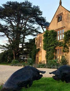 The Pig hotel and restaurant, Combe, Devon