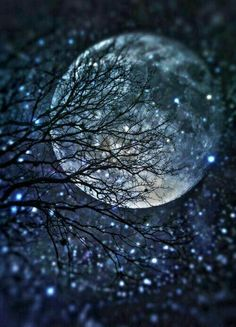 """""""The moon embalms me with her love and she kisses me good night. The nightingale sings her song of love when I take rest in the arms of darkness in the night!"""" ― Avijeet Das Good night,…wherever you. Sun Moon, Stars And Moon, Moon Shine, Ciel Nocturne, Shoot The Moon, Moon Magic, Jolie Photo, Moon Art, Pretty Pictures"""