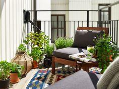 Her er stuen næsten flyttet udenfor med kraftige møbler og orientalske tæpper