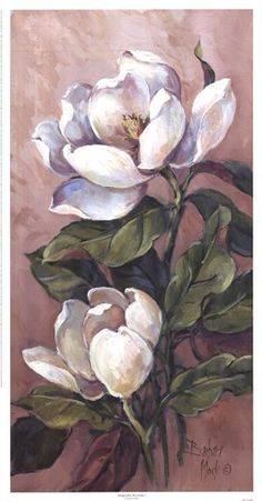 Magnolia Accents l by Barbara Mock - Blumen Art Floral, Oil Painting Flowers, Watercolor Flowers, Watercolor Paintings, Plant Drawing, Painting & Drawing, Botanical Art, Botanical Illustration, Magnolia Paint