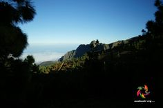 Pico del Valle -Arafo #tenerife #landscape #hikingtenerife  #tenerifesenderos #senderismo #trekking #hiking #hike #sky #nature #outdoors